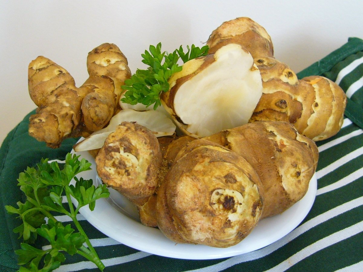 A diferencia de otros tubérculos como la patata, el topinambur puede consumirse crudo