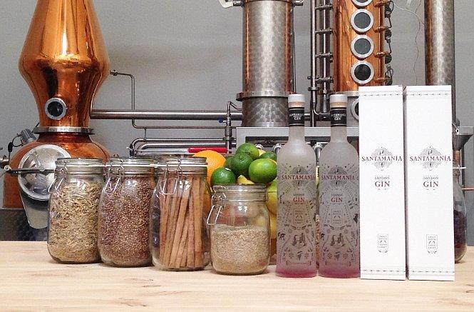 Botánicos y botellas de Santamanía Gin en su destilería