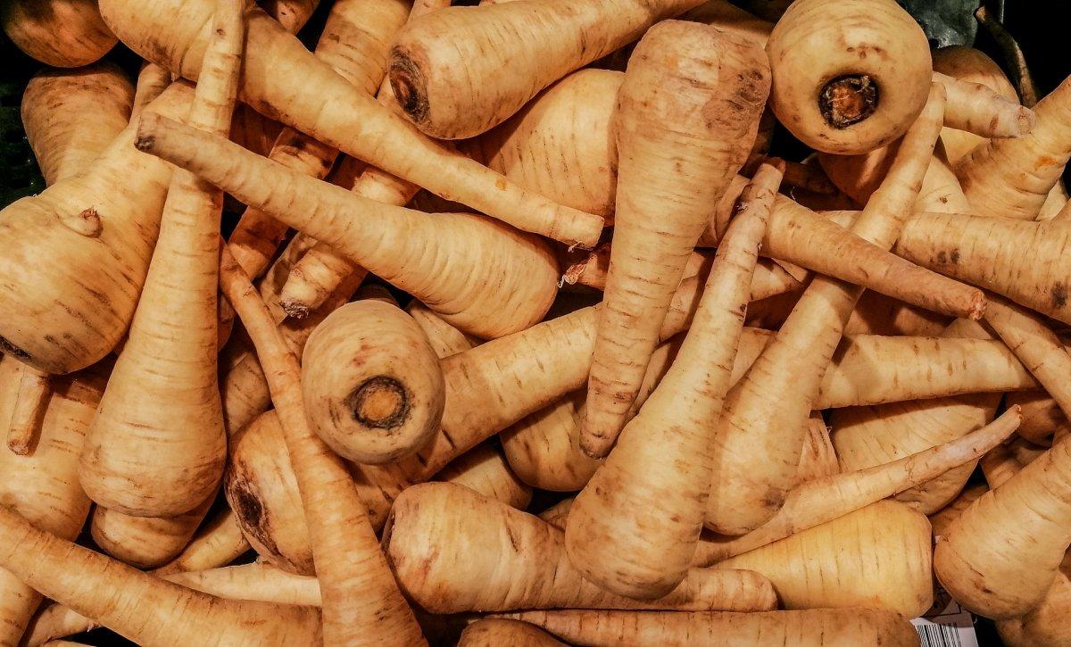 Chirivía, la hortaliza reemplazada