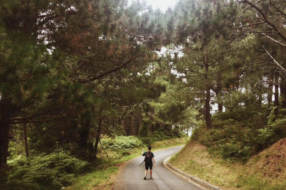 Daniel Pino en un bosque