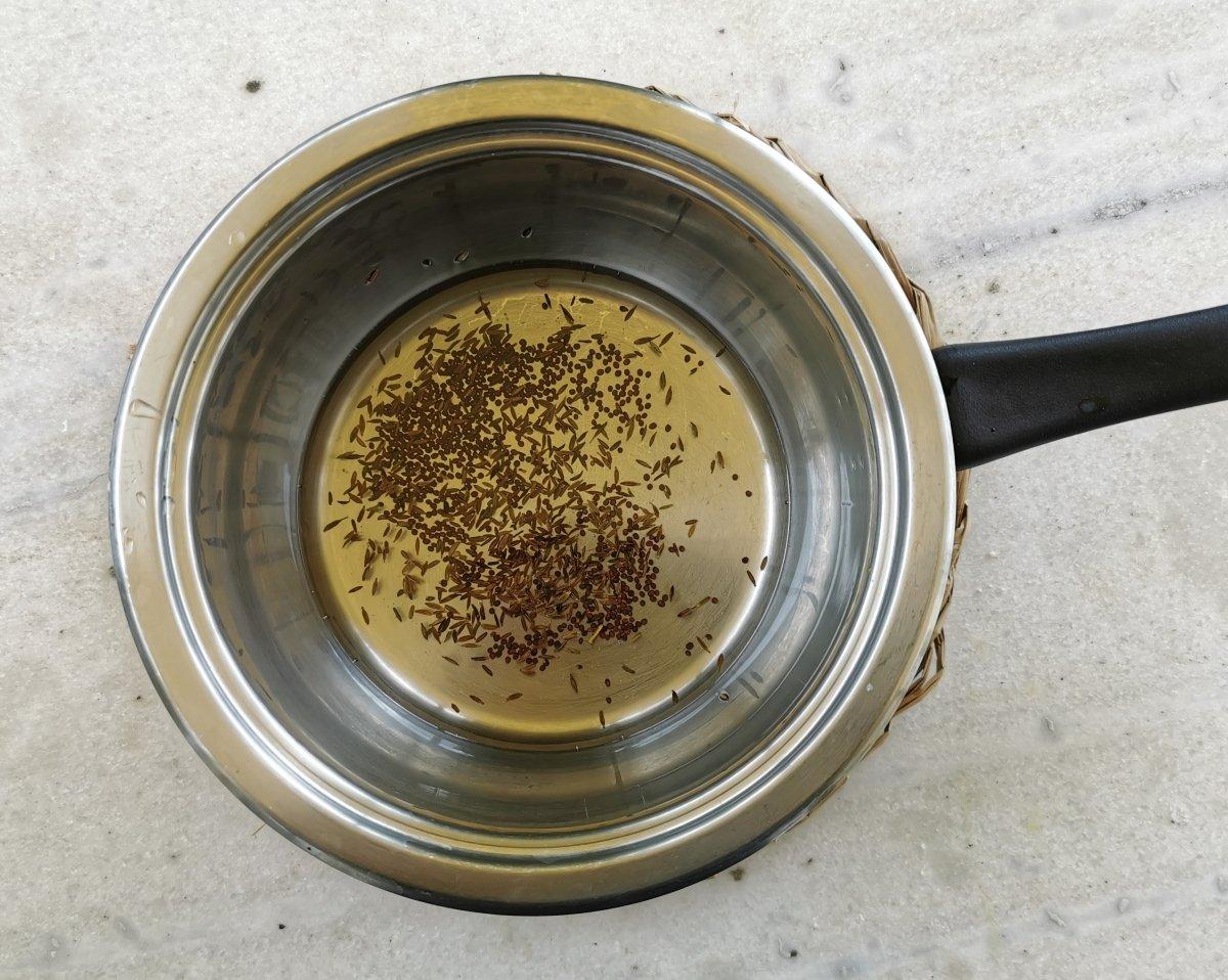 En un cazo poner el aceite de girasol y añadir las semillas de mostaza y de comino.