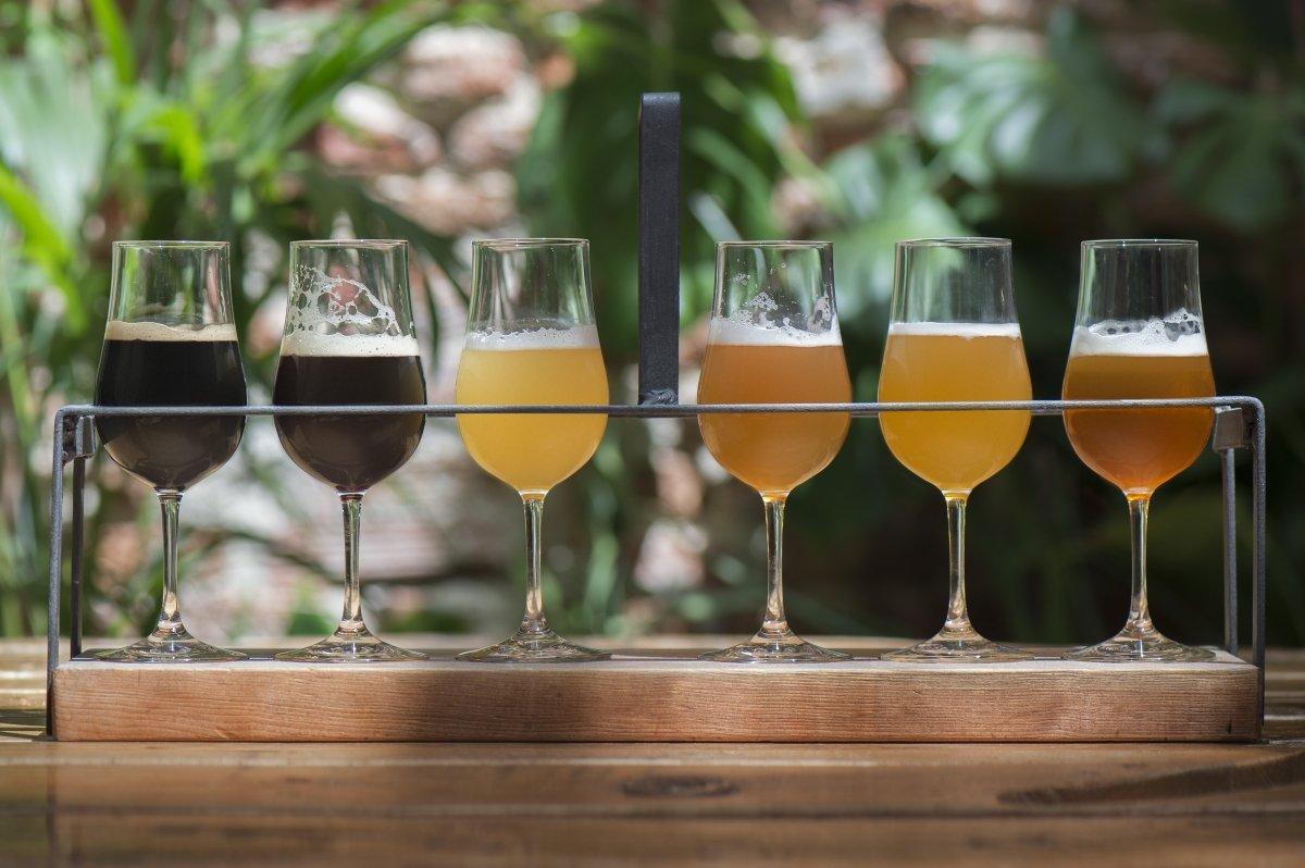 Gran variedad de cervezas nacionales y de importación