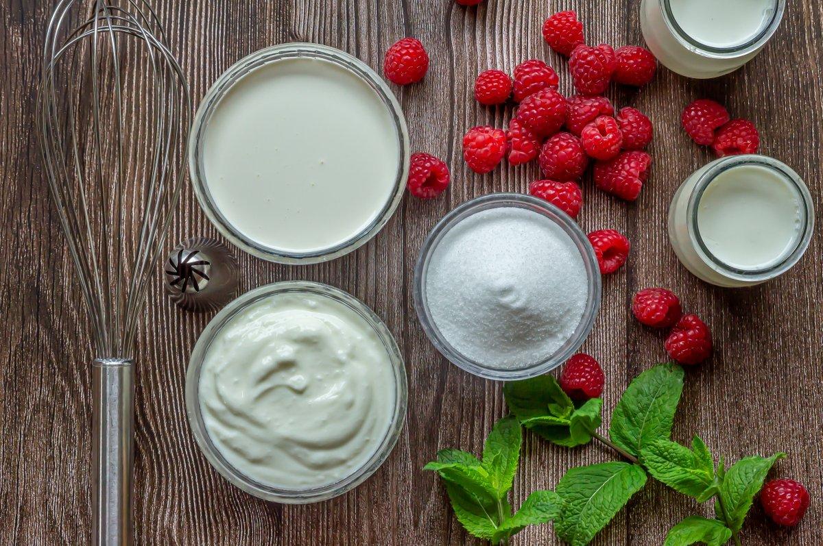 Ingredientes para el helado de yogur