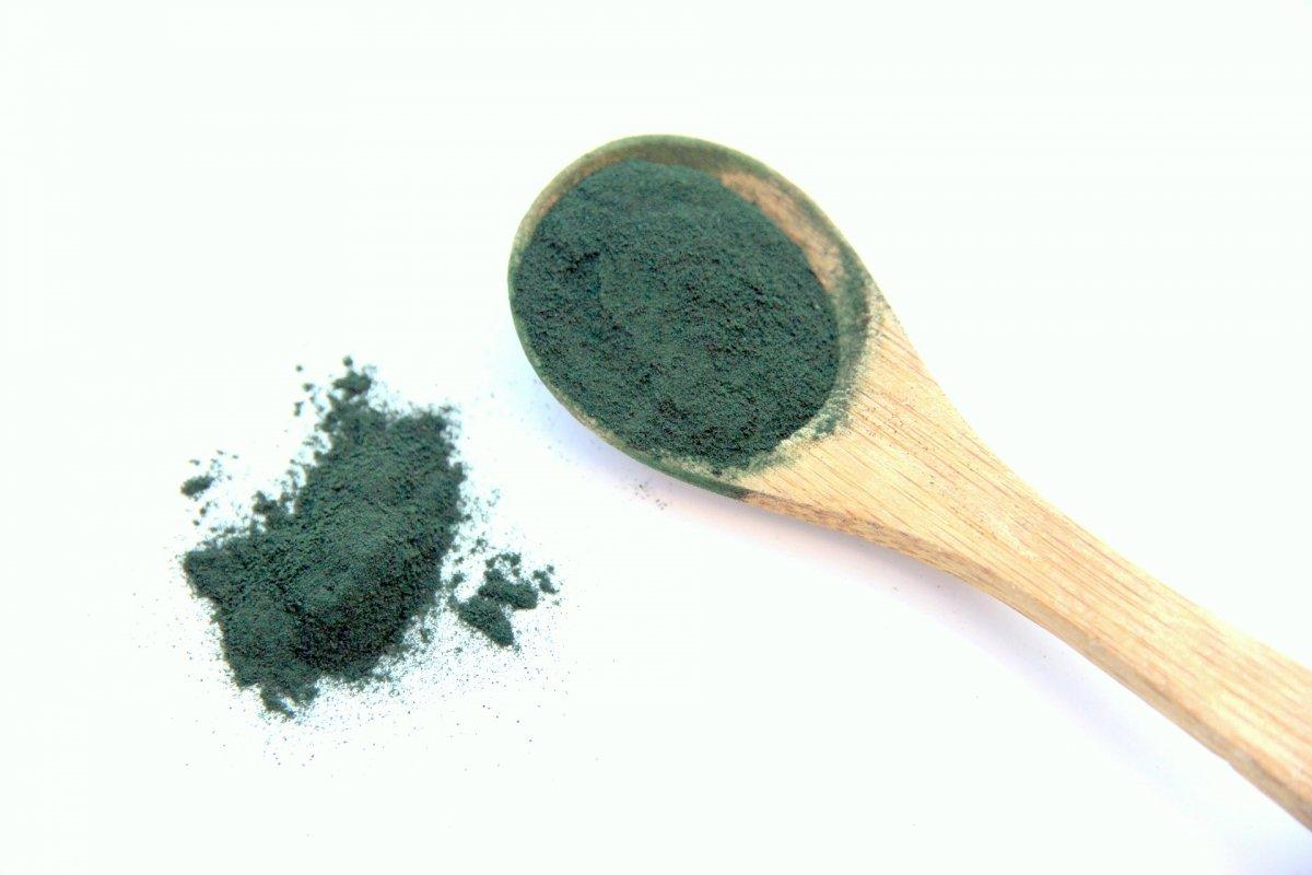 La espirulina es una cianobacteria y no un alga