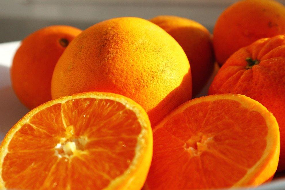 Naranja blanca común, la reina de los zumos