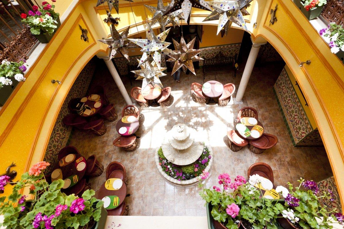 Patio del restaurante Iguanas Ranas Centro