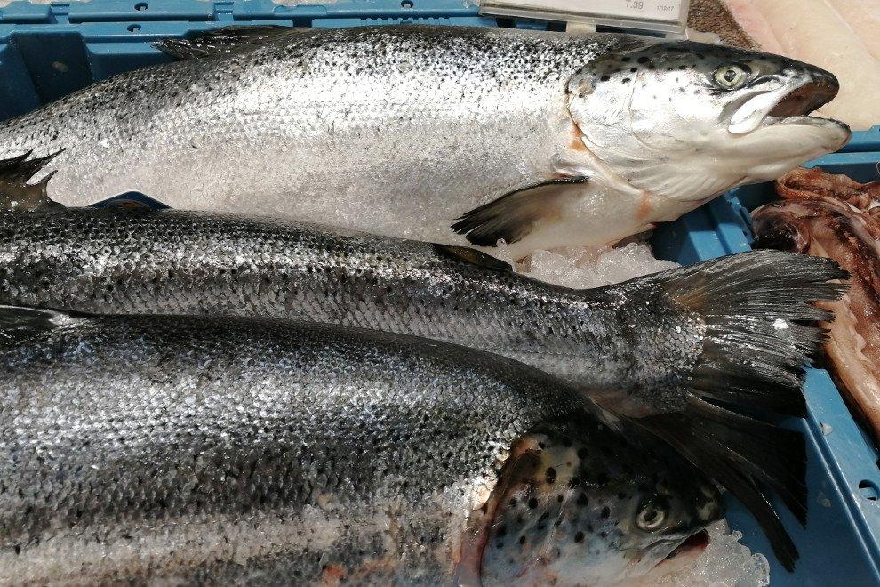 Pescado crudo en una pescadería
