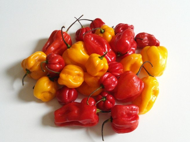 Pimientos pequeños rojos y amarillos