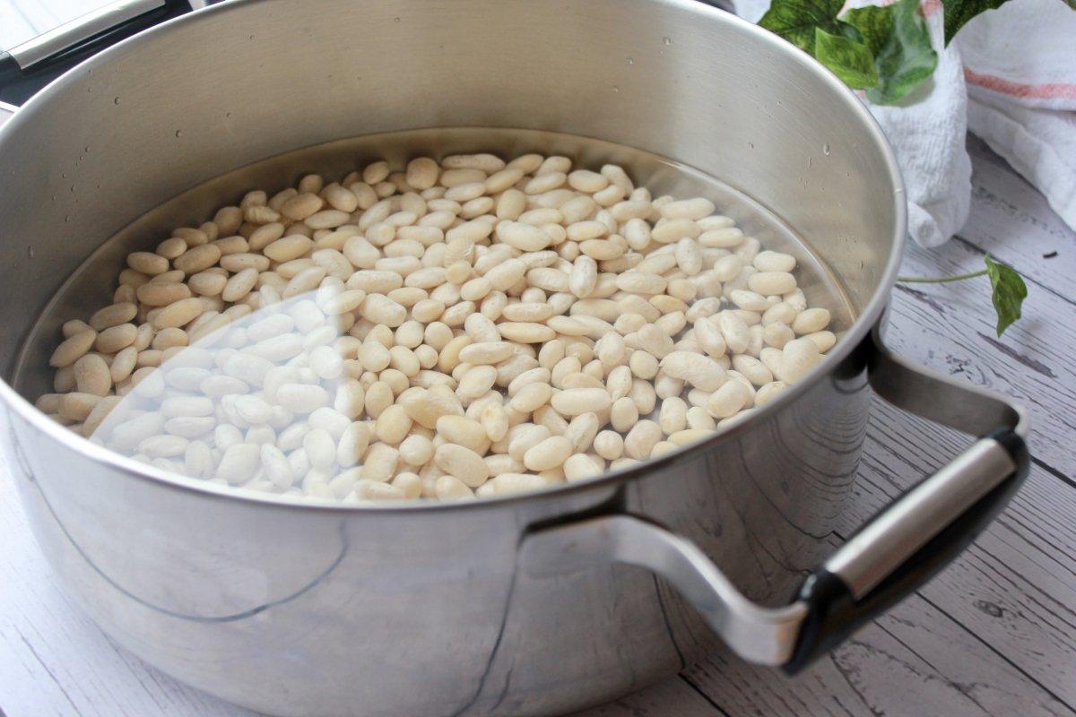 Pochas frescas dentro de la cazuela cubiertas con agua fría previa su cocción