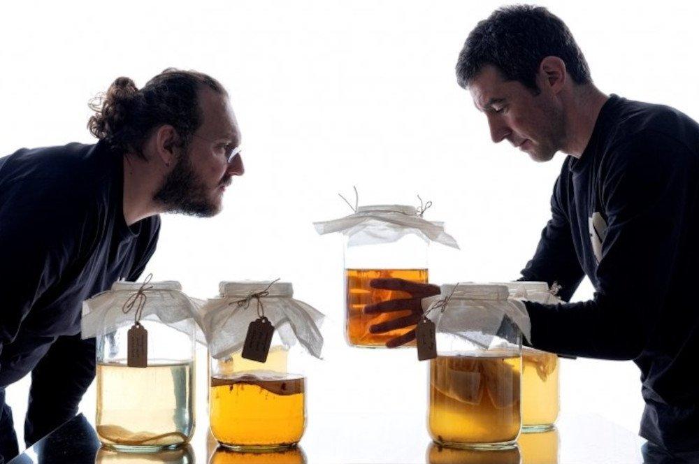 Ama Brewery, la kombucha gastronómica