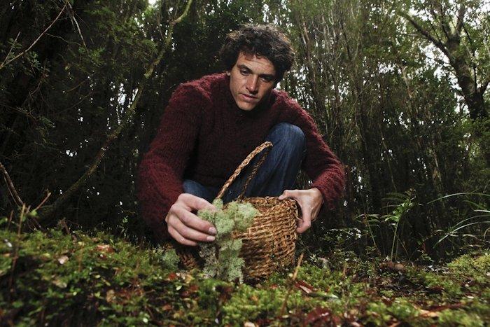 Rodolfo Guzmán en el bosque chileno