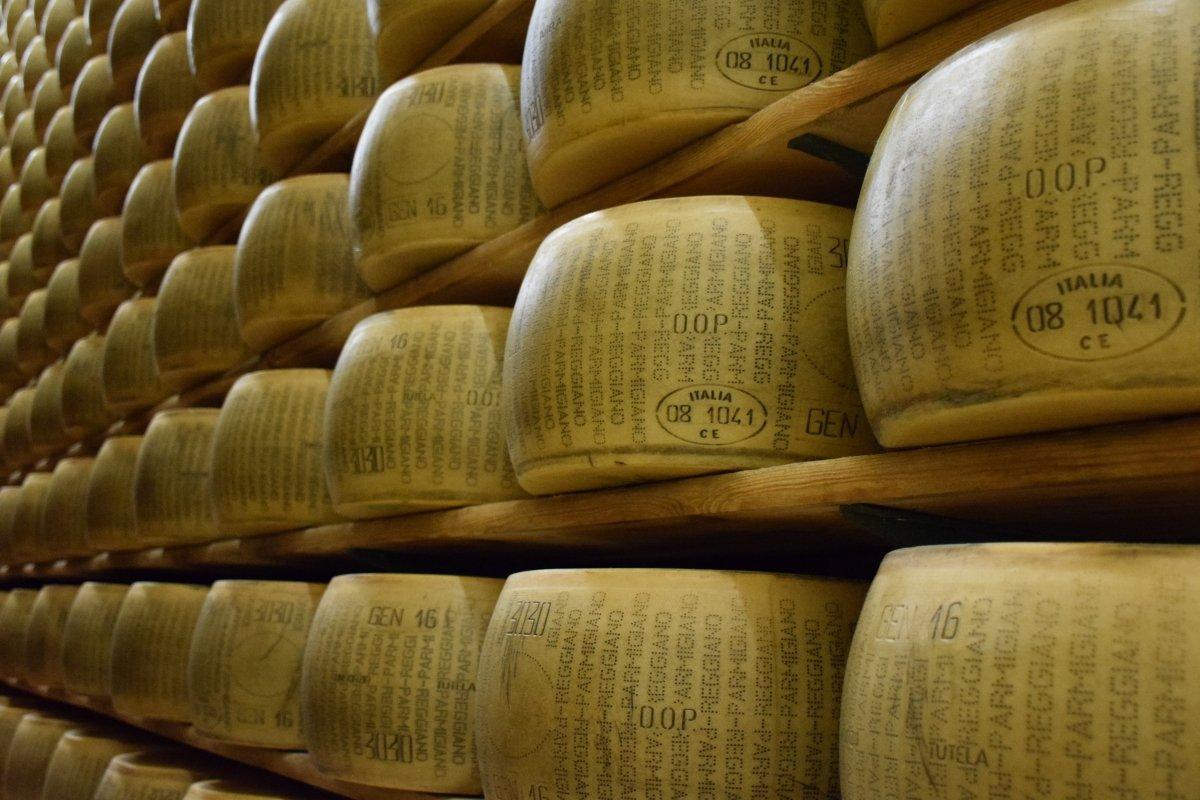 Ruedas de queso parmesano DOP madurando