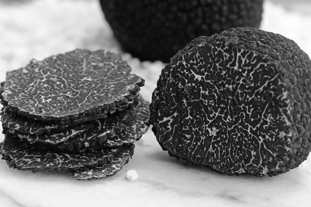 Temporada de trufa negra, un tesoro gourmet en la puerta de casa