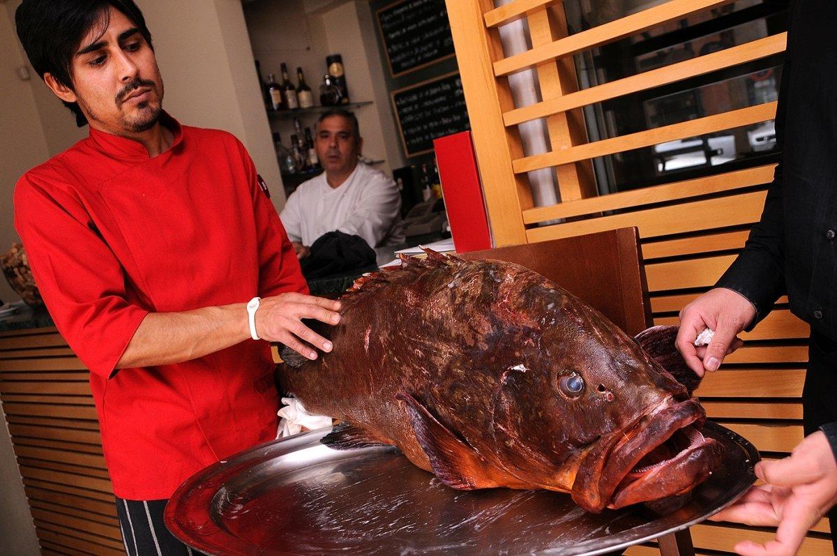Una gran pieza de pescado en el restaurante Tribeca de Sevilla