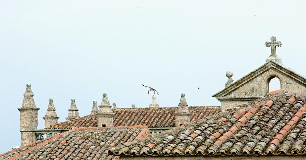 Vista de los tejados colindantes con Atrio