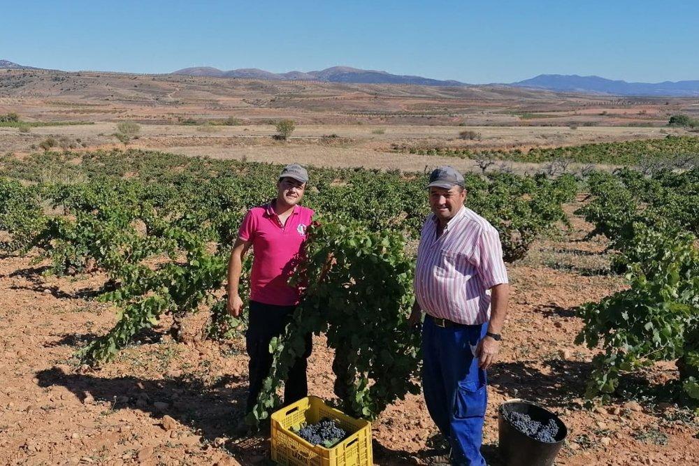 Viticultores DOP Calatayud